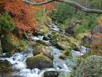 Podzim - okolí a volný čas