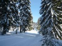 Zima - okolí a volný čas